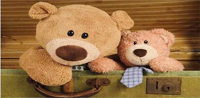 搬家后清洗玩偶熊