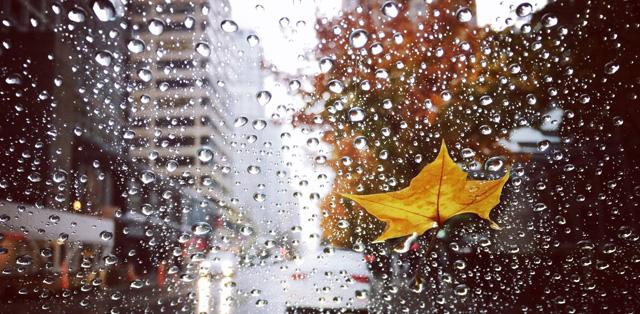 雨雪天氣搬家